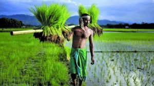 PM Kisan Samman Nidhi – The Debate on Cash Vs In-kind Transfers